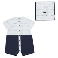 Vêtements Garçon Projet dintroduction en bourse Train Logo Series M Tee 1douard Marine