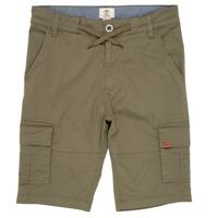 Vêtements Garçon Shorts / Bermudas Timberland TAO Vert