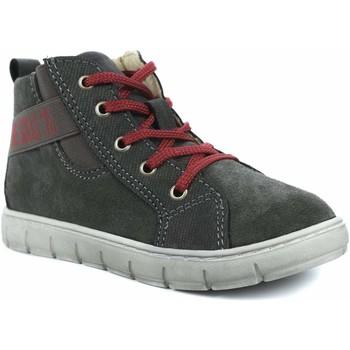 Chaussures enfant Primigi 44138