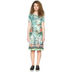 Vêtements Femme Robes courtes Desigual Robe Eleonor Balneario Vert 18SWVK95