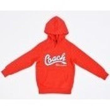 Vêtements Enfant Sweats Champion Sweat-shirt à capuche  pour enfants Rouge