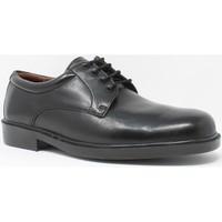 Chaussures Homme Derbies Baerchi Chaussure homme  1650-ae noir Noir