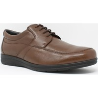 Chaussures Homme Derbies Baerchi Chaussure homme  3802 marron Marron