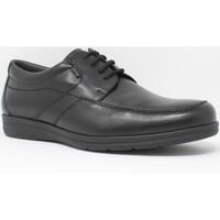 Chaussures Homme Derbies Baerchi Chaussure homme  3802 noir Noir
