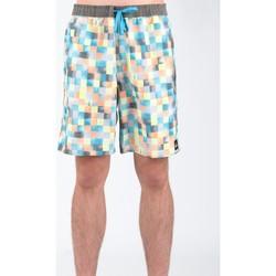 Vêtements Homme Shorts / Bermudas Quiksilver AQYJV00018-NGG6 Wielokolorowy