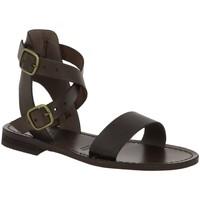 Chaussures Femme Sandales et Nu-pieds Iota 720 MARRON