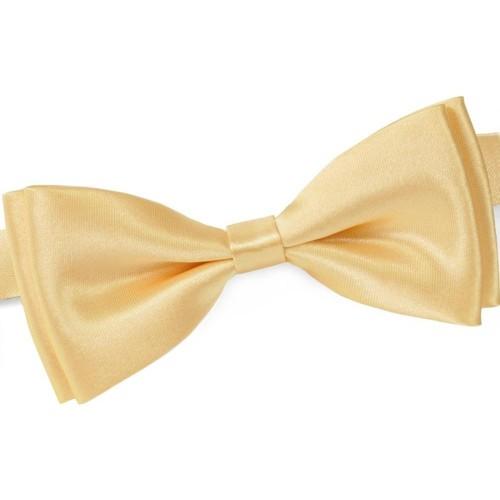 Vêtements Homme Cravates et accessoires Dandytouch Noeud papillon uni - Couleur - Beige Beige