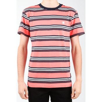 Vêtements Homme T-shirts & Polos DC Shoes DC EDYKT03373-MKE0 Wielokolorowy