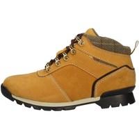 Chaussures Femme Boots Wild Land FOREST D JAUNE