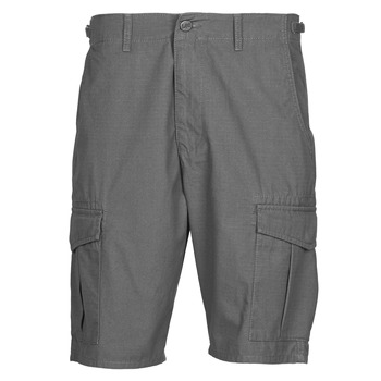 Vêtements Homme Shorts / Bermudas Lee CARGO SHORT FATIGUE Steel grey