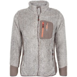 Vêtements Homme Polaires Peak Mountain CAFFY taupe