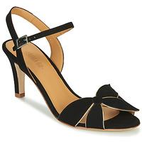 Chaussures Femme Sandales et Nu-pieds Emma Go SELENA Noir