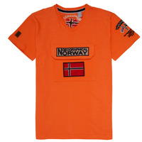 Vêtements Garçon T-shirts manches courtes Geographical Norway JIRI Orange