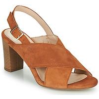 Chaussures Femme Sandales et Nu-pieds Betty London MARIPOL Cognac
