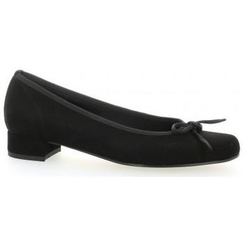 Chaussures Femme Ballerines / babies Elizabeth Stuart Ballerines cuir velours Noir