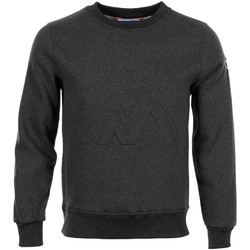 Vêtements Homme Sweats Peak Mountain CAMURAC gris