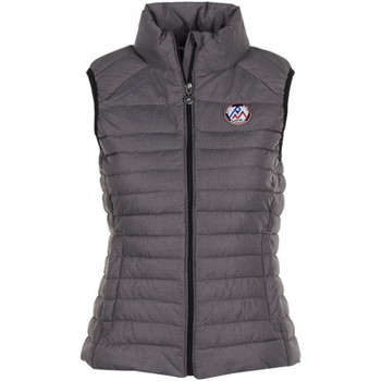 Vêtements Femme Doudounes Peak Mountain ACENA gris