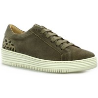 Chaussures Femme Baskets basses So Send Baskets cuir velours  /leo Taupe/leo