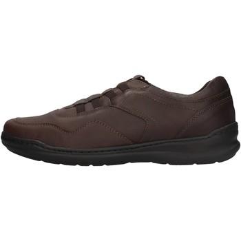 Chaussures Homme Baskets basses Braking - Slip on  testa di moro 6459 MARRONE
