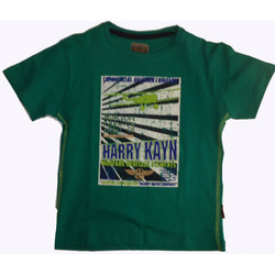 Vêtements Homme T-shirts manches courtes Harry Kayn Tshirt manches courtes ECEBANUP vert