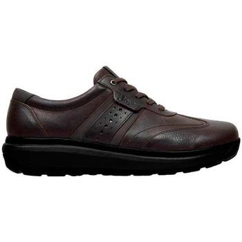 Chaussures Homme Baskets basses Joya DAVID M BROWN