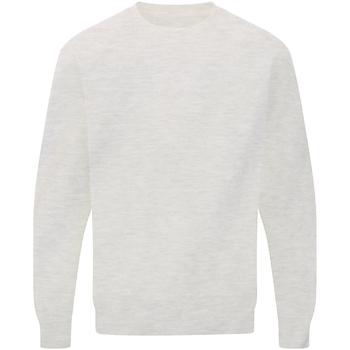 Vêtements Homme Sweats Sg Raglan Gris clair