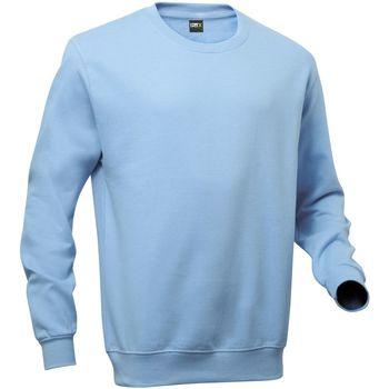 Vêtements Homme Sweats Pro Rtx RTX Bleu ciel