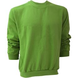 Vêtements Homme Sweats Anvil 71000 Vert pomme