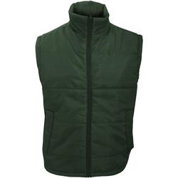 Vêtements Homme Coupes vent Result Windproof Vert bouteille