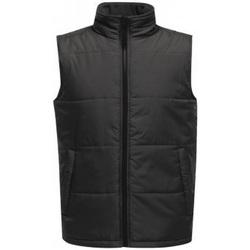 Vêtements Homme Doudounes Regatta Standout Gris/noir