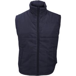 Vêtements Homme Gilets / Cardigans Result Windproof Bleu marine