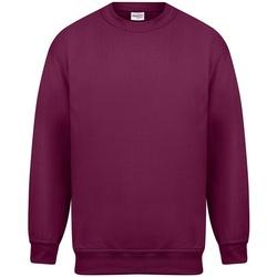 Vêtements Homme Sweats Absolute Apparel Magnum Bordeaux