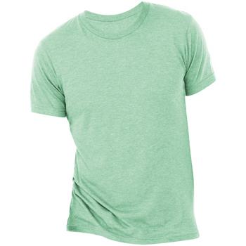 Vêtements Homme T-shirts manches courtes Bella + Canvas Triblend Vert menthe