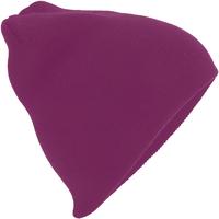 Accessoires textile Bonnets Beechfield B44 Bordeaux