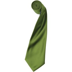 Vêtements Homme Cravates et accessoires Premier Satin Vert oasis
