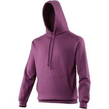 Vêtements Sweats Awdis College Violet bizantium