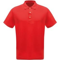 Vêtements Homme Polos manches courtes Regatta Classics Rouge
