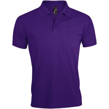 Vêtements Homme Polos manches courtes Sols Prime Violet foncé