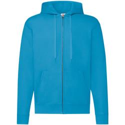 Vêtements Homme Sweats Fruit Of The Loom Hooded Bleu azur