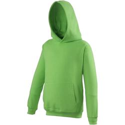 Vêtements Enfant Sweats Awdis Hooded Vert citron