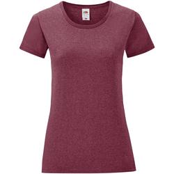 Vêtements Femme T-shirts manches courtes Fruit Of The Loom Iconic Bordeaux chiné