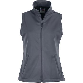 Vêtements Femme Gilets / Cardigans Russell Gilet BC1510 Gris