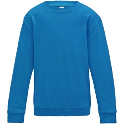 Vêtements Enfant Sweats Awdis JH30J Bleu saphir