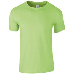 Vêtements Homme T-shirts manches courtes Gildan SoftStyle Vert clair