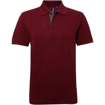 Vêtements Homme Polos manches courtes Asquith & Fox Contrast Bordeau/Gris