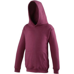 Vêtements Enfant Sweats Awdis Hooded Bordeaux