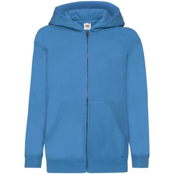Vêtements Enfant Sweats Fruit Of The Loom Hooded Bleu azur