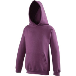 Vêtements Enfant Sweats Awdis Hooded Prune