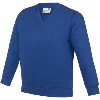Vêtements Enfant Sweats Awdis Academy Bleu roi profond
