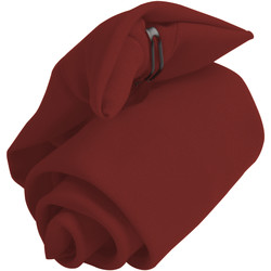 Accessoires textile Homme Echarpes / Etoles / Foulards Premier  Bordeaux